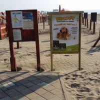 Area dog spiaggia Rimini_3